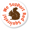 we support red squirrels